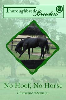 No Hoof, No Horse (Thoroughbred Breeders #2) by Christine Meunier