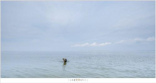 Het vervaarlijk uitziende zeemonster, dat uiteindelijk de beste en trouwste vriend van de mens blijkt te zijn.