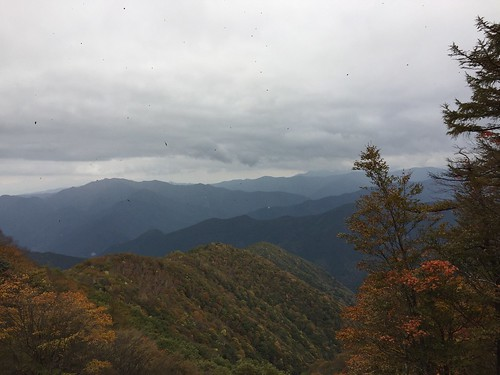 蜀咏悄 2016-10-30 23 39 23