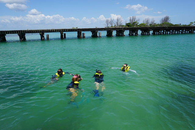 Snorkeling Ecoventure with Charlotte Harbor Aquatic Preserves in Gasparilla Sound, Fla, June 22, 2016