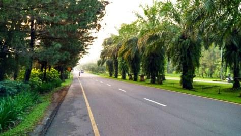 Through the Empty Road