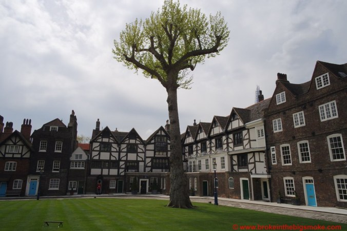 Tower of London Tree