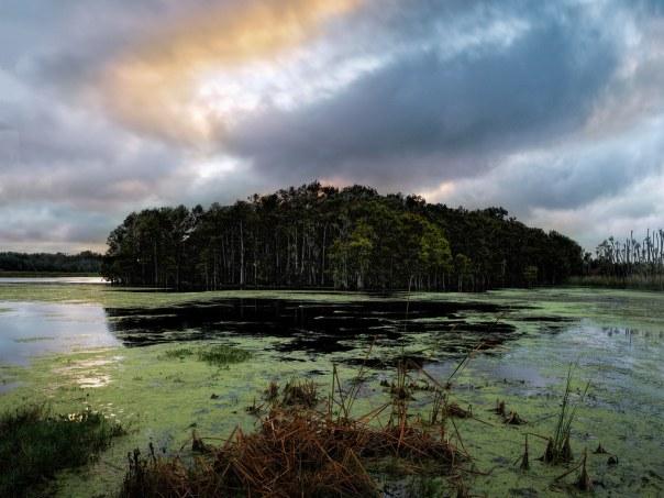 Middle marsh mystery island