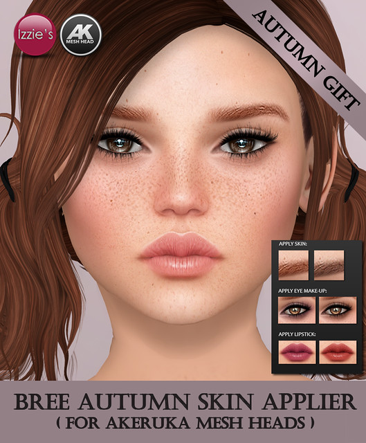 AK Applier Skin (Bree Autumn Gift)