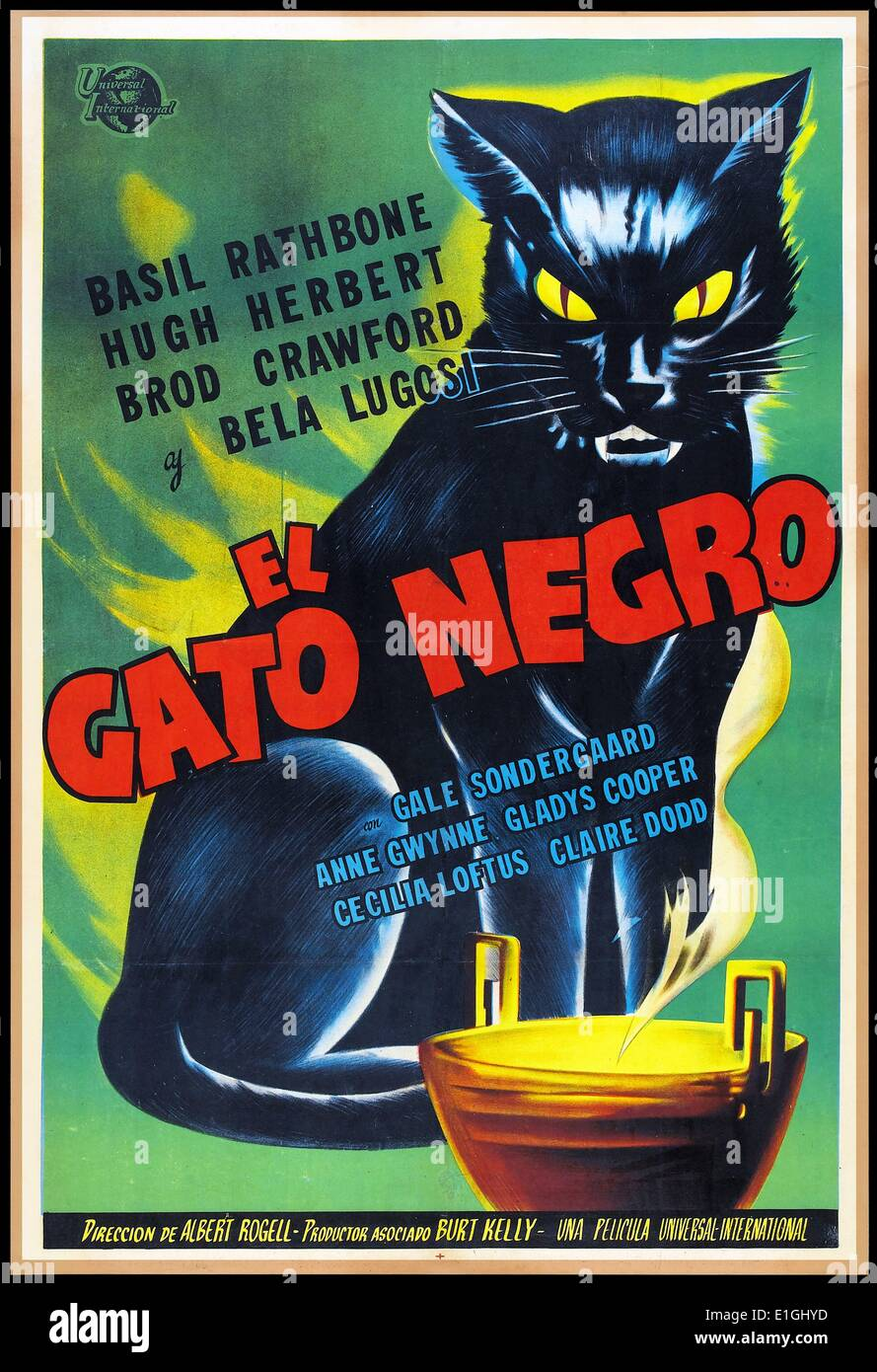 Poster do filme Gato Negro