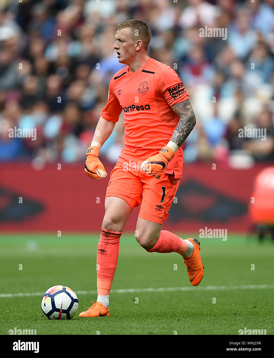 Everton goalkeeper Jordan Pickford Stock Photo  185408911   Alamy Everton goalkeeper Jordan Pickford