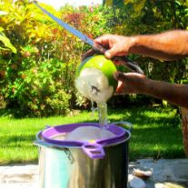 Coconut Water-Superior Hydration; making coconut water at Cabarete,D.R.