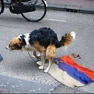 США не готовы возвращаться к прежним отношениям с Россией из-за ситуации на востоке Украины, - Госдепартамент - Цензор.НЕТ 5046