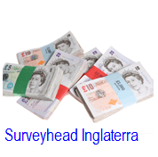 Surveyhaed UK cada centavo conta
