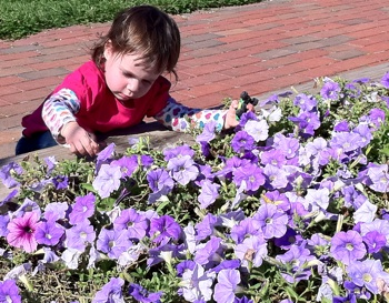 How to Turn Little Thumbs Green: Gardening with Kids