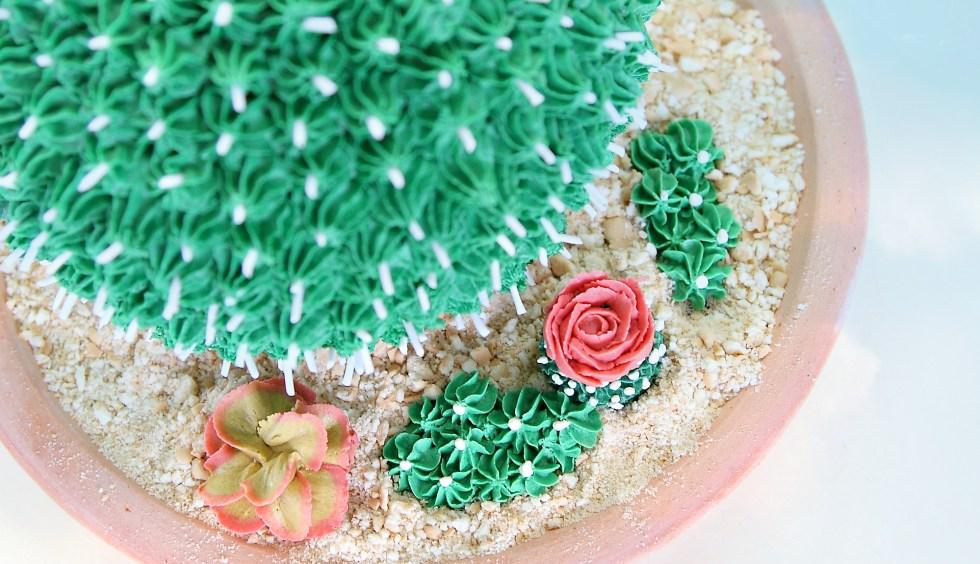 cactus cake 7