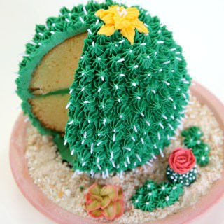 cactus cake 1 crop