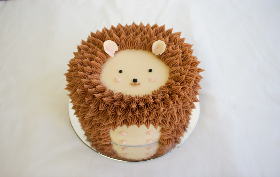 Hedgehog Cake 1