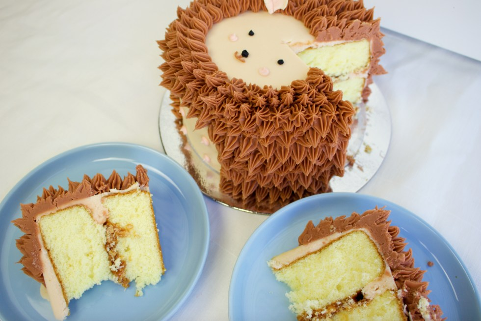 Hedgehog Cake Slice