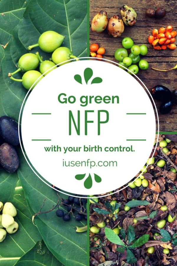   nfp chart   nfp humor   nfp catholic   birth control methods   birth control pills