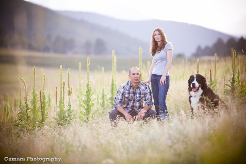 Colorado Wedding Photographers - Evergreen Engagement Session