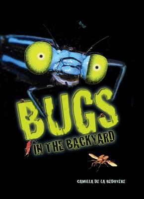 Bugs in my Backyard