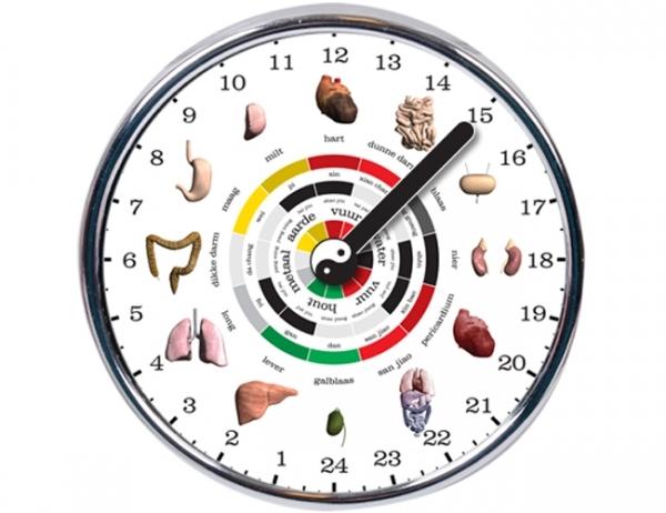 24-hour-chinese-organ-clock