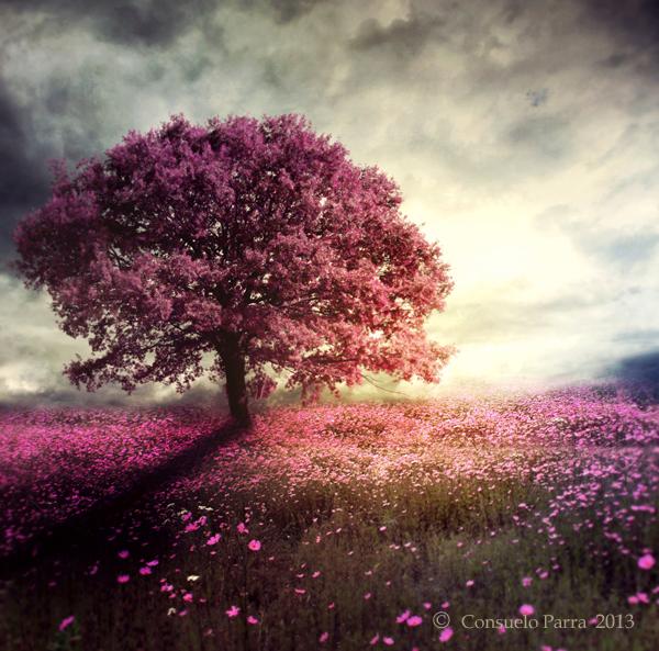 spiritual__tree_by_aeternum_art-d64v58d
