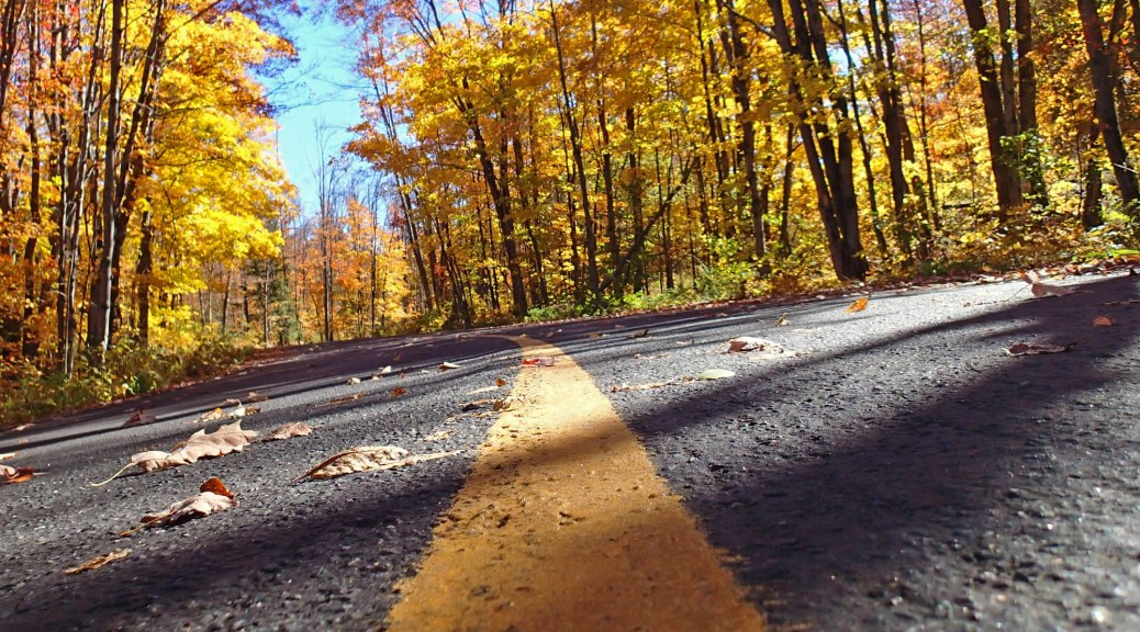 Some great roads just north of Orillia.