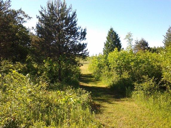 CHRC-Facility-Grassy-trail-sm
