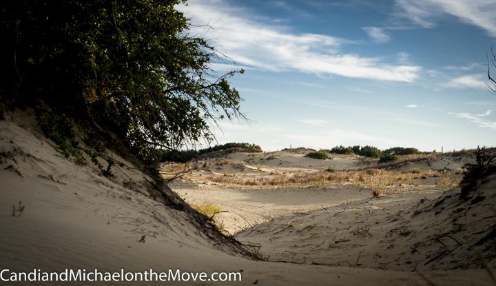 The beautiful dunes at Jockey's Ridge State Park