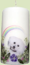 dog candle