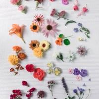 Jadalne kwiaty do dekoracji ciast cz. II LATO