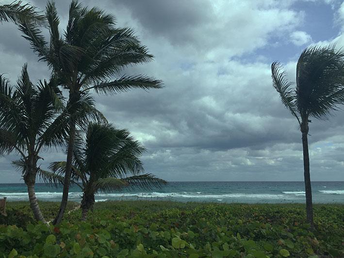 Fort-Lauderdale-bate-volta8