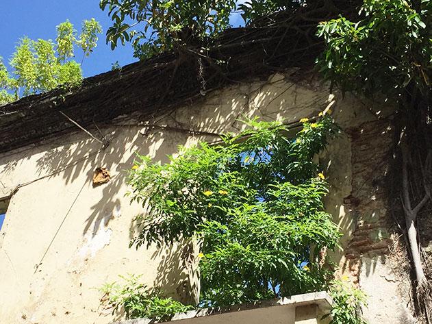 cidade-do-panama46