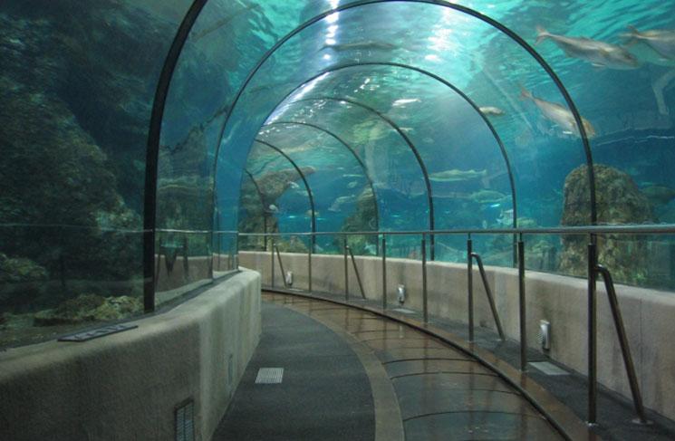 aquario-de-barcelona-20