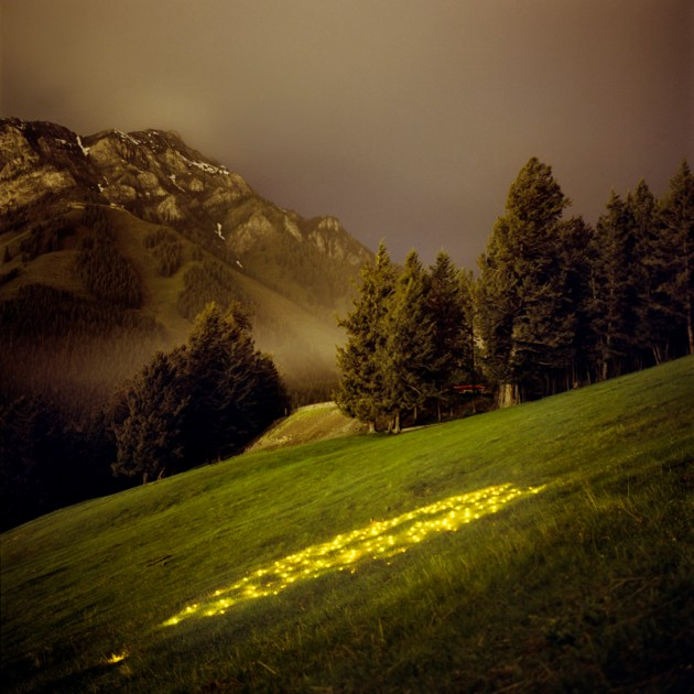 Barry Underwood, Norquay (Yellow), 2007, archival pigment print, 28 x 28 in., Collection of the Akron Art Museum, Museum Acquisition Fund 2014.20