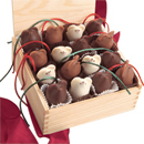 capability mom finds the best chocolate gift - and they are mice LA Burdick