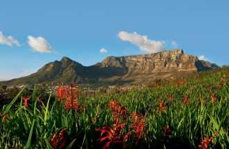 Table-Mountain-New7Wonders