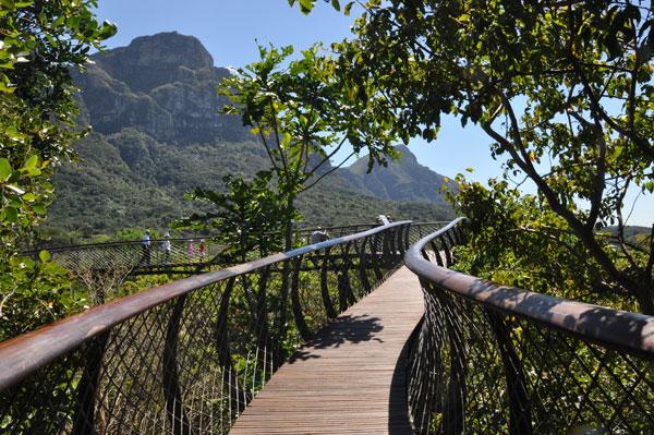 Cape-Town-Big-7-Kirstenbosch