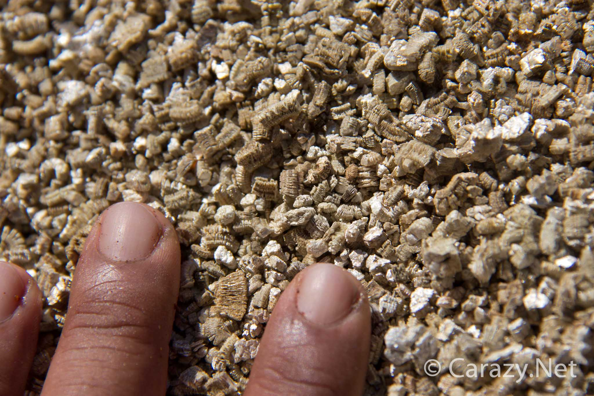 Gracious Wicking Wicking Bed Media Comparison It Feels Like Fibrous Sand A Closeup Conclusion Carazy Suburban Barely Sticksto Your Skin Like Wet Dirt Because houzz-03 Vermiculite Vs Perlite