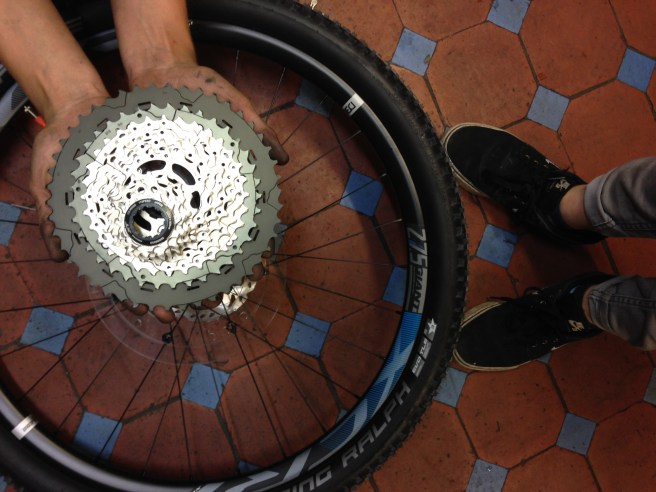 Giant Anthem 1 46 T sprocket Cyclopaedia Cardiff Cyclist