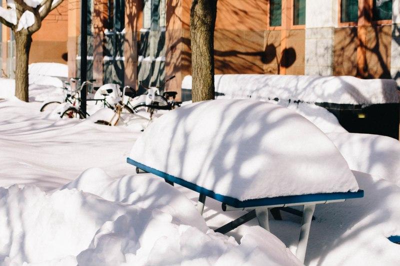 blizzard-17