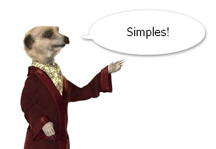 SEO Techniques for Meerkat Breeders