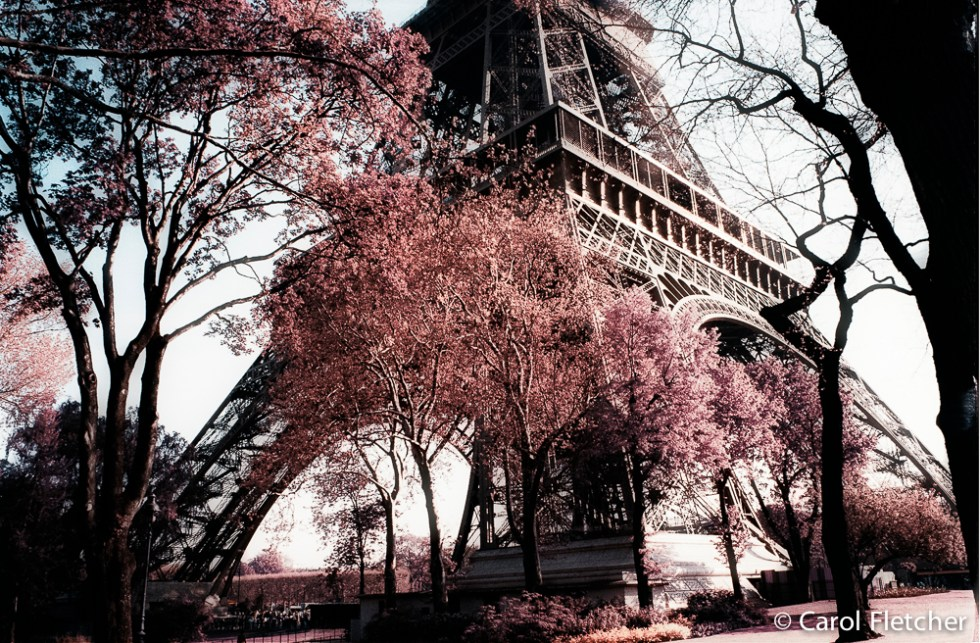 Paris Eiffel Tower in the Spring
