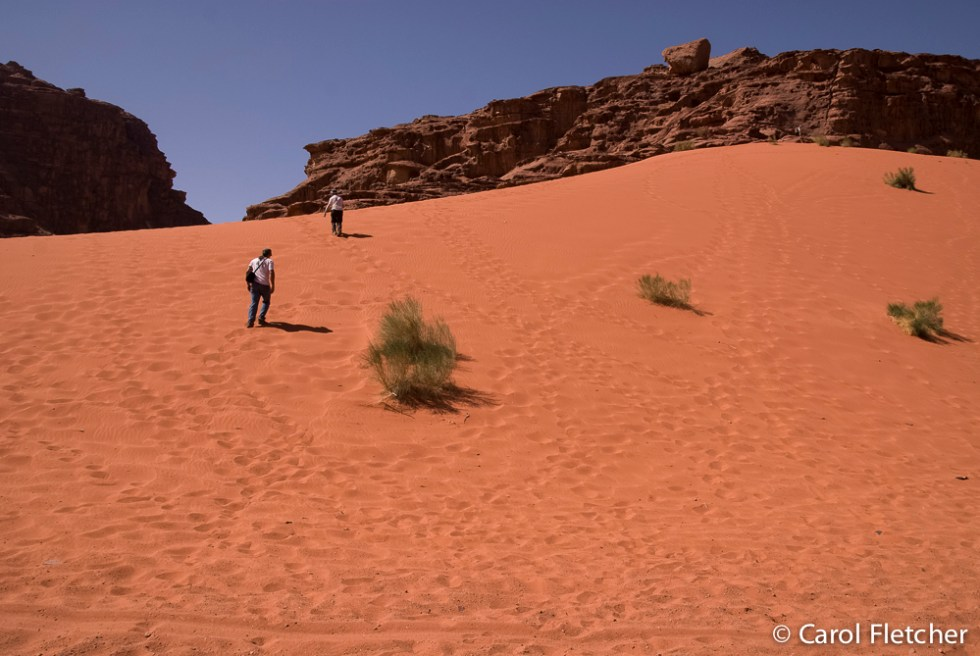 Climbing up the red sand dunes
