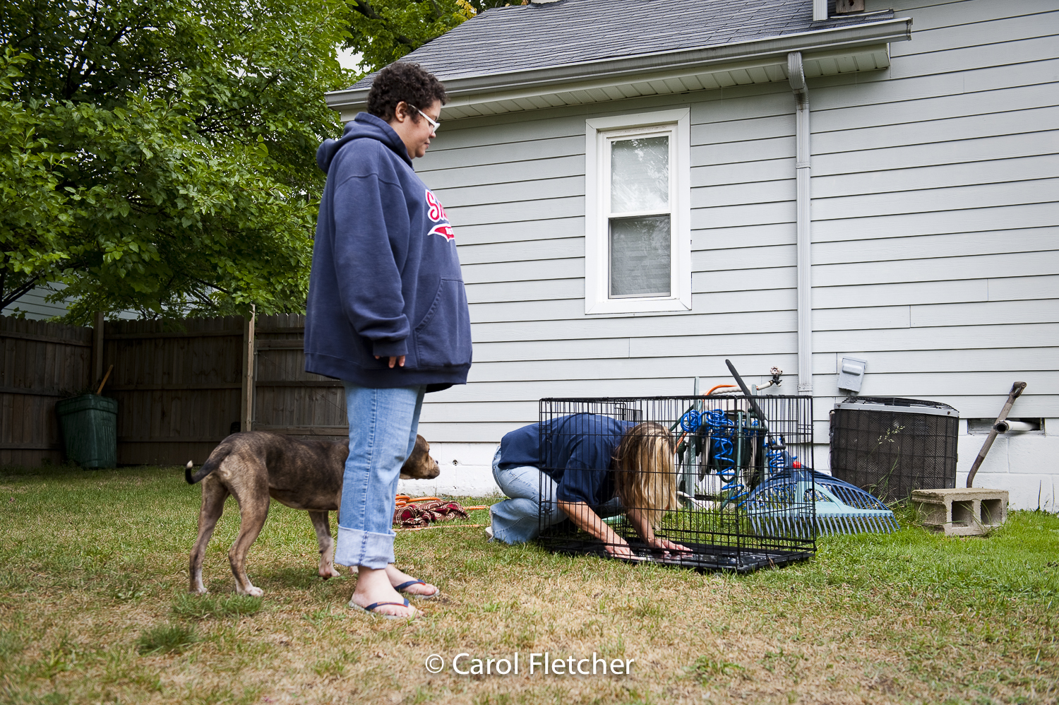 crate cage dog cleaning yard rescuer