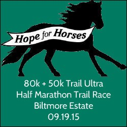 Run for the Horses 2015
