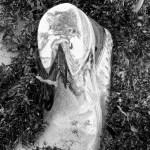 lost soles (15)