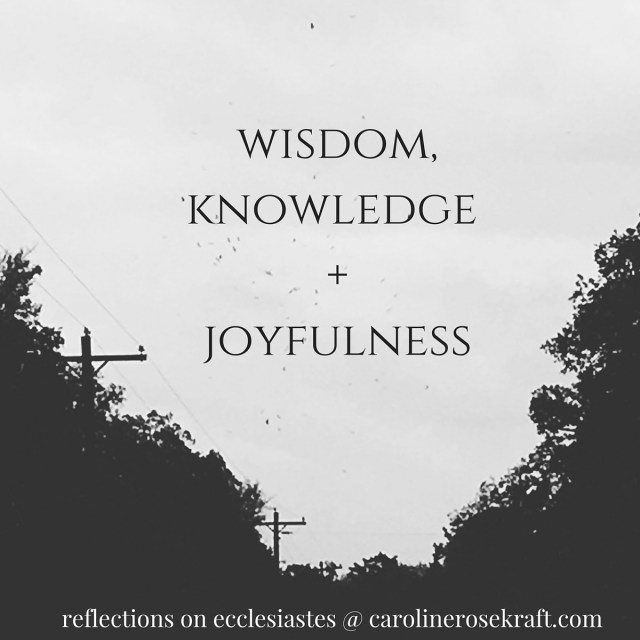 wisdom, knowledge and joyfulness {a new series}