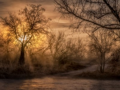 Sunrise through early morning mist casts rays of light on a path across Sabino Creek in Arizona.