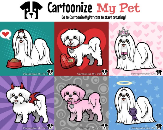 maltese created on cartoonize my pet