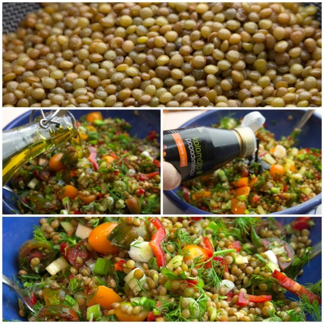 fakes eglouvis salata 3
