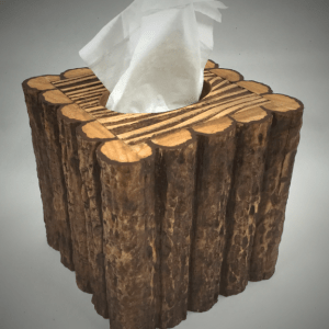 twiggy-branch-tissue-box