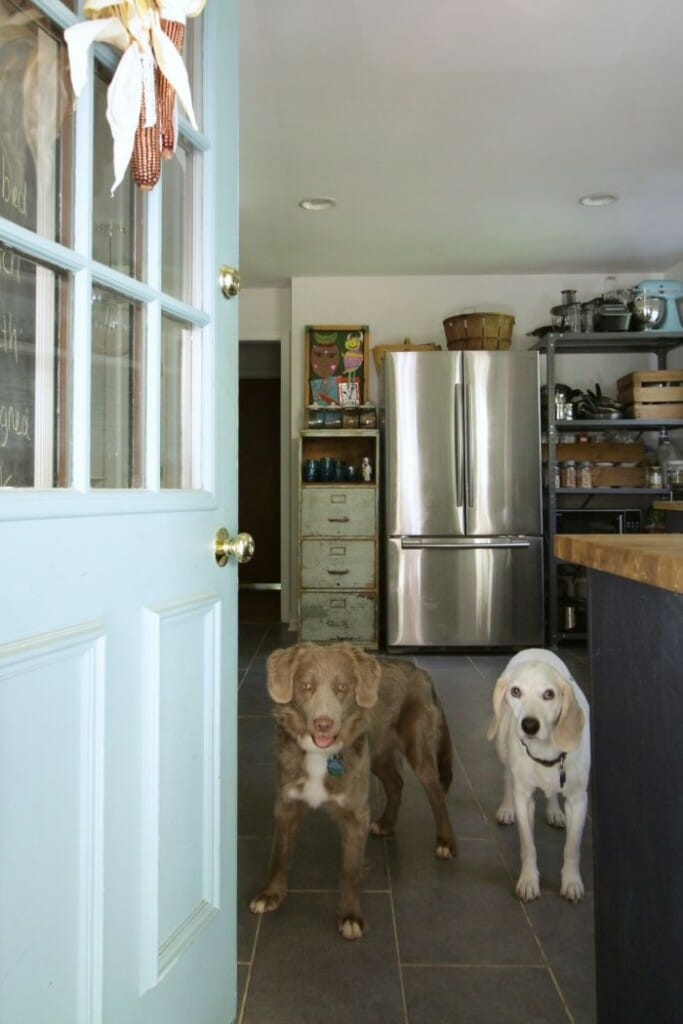 Catcher and Jake in Kitchen